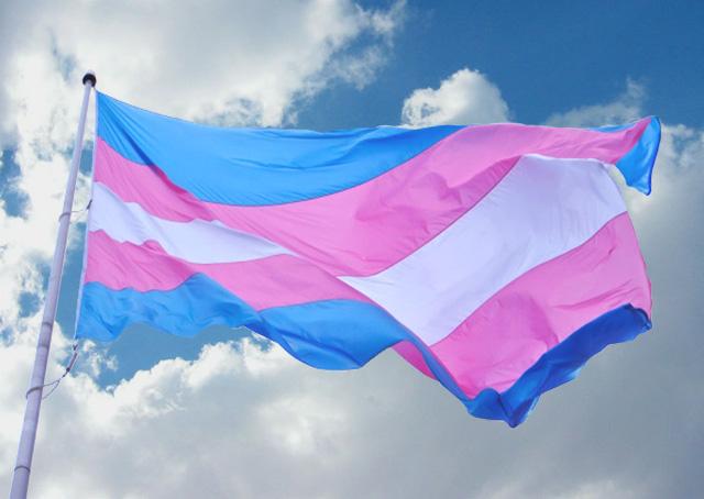 Sabadell aprova despatologitzar la transsexualitat gràcies a la iniciativa de GuanyemSabadell